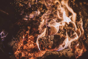 Close up log fire